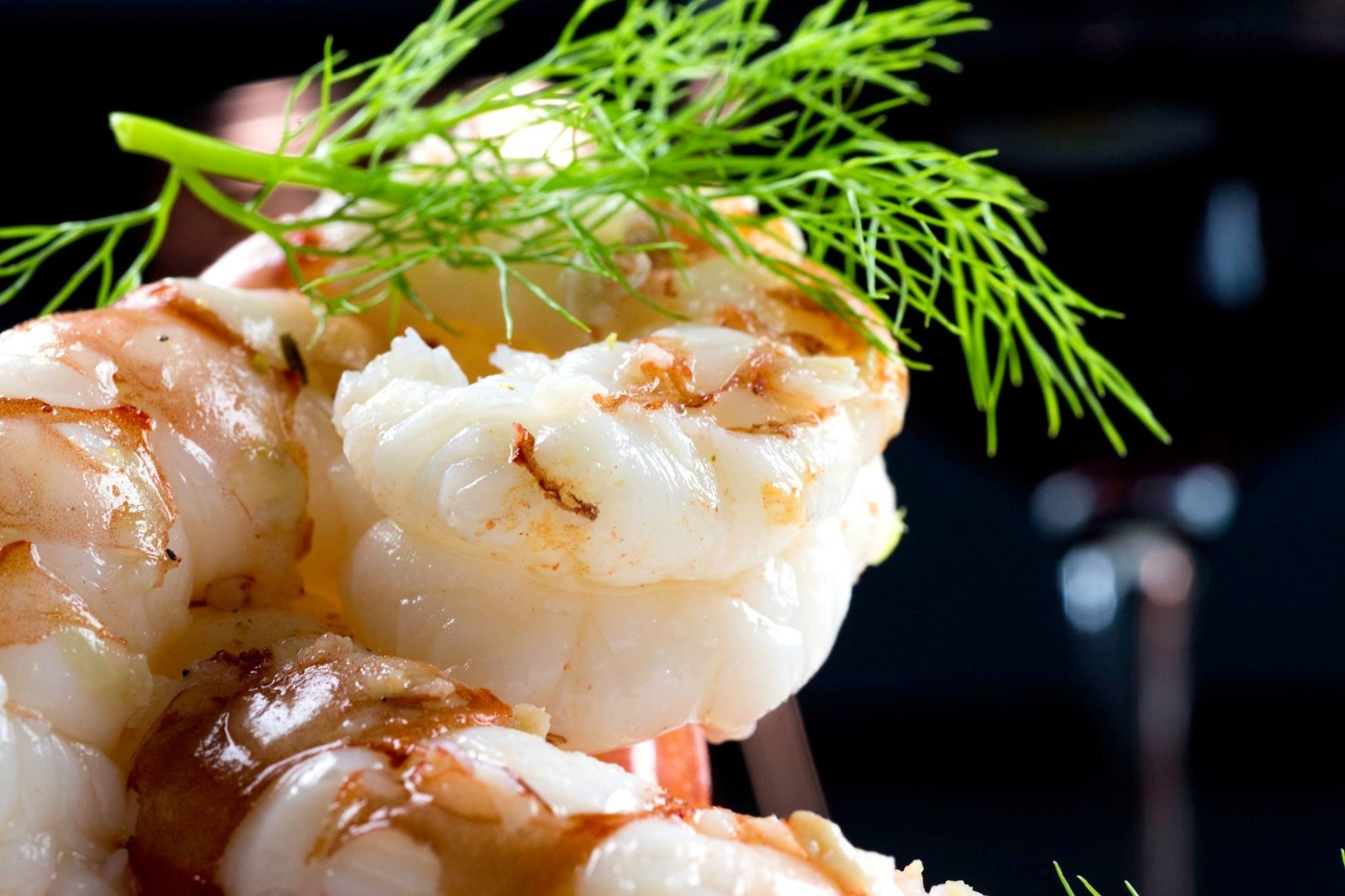 foodphotography-1608284856.jpg